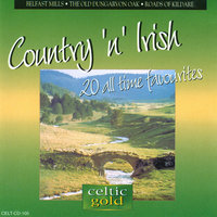 Country 'n' Irish - 20 All Time Favourites — Marie O'Brien
