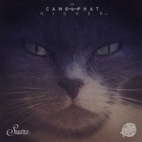 Higher EP — CamelPhat