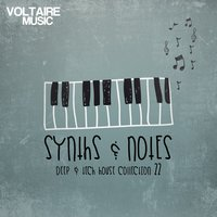 Synths and Notes 22 — сборник