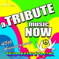 A Tribute Music Now: 45TH Anniversary Tribute to Woodstock — The Tribute Beat