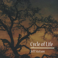 Cycle of Life — Jeff Stetson