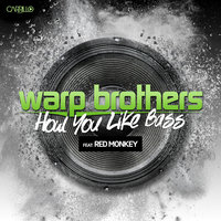 How You Like Bass — Warp Brothers