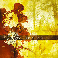Accessories (Rarities & B-Sides) — The Gathering