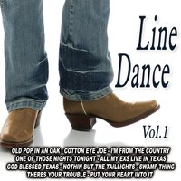 Line Dancing Vol. 1 — The Country  Band