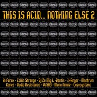This Is Acid... Nothing Else 2 — сборник