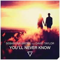 You'll Never Know (feat. David Taylor) — David Taylor, Sebastian Bronk