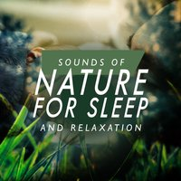 Sounds of Nature for Sleep and Relaxation — Sounds of Nature for Deep Sleep and Relaxation