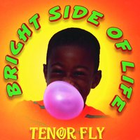 Bright Side Of Life — Tenor Fly