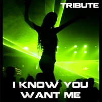 I Know You Want Me (Tribute to Pitbull) — Dance Hit Masters