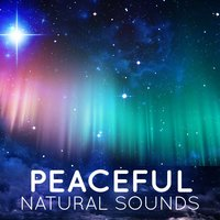 Peaceful Natural Sounds — Sleep Sound Library