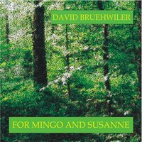 For Mingo and Susanne — David Bruehwiler & Susanne Elsensohn