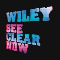 See Clear Now — Wiley