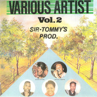 Sir Tommy's Production - Various Artists, Vol. 2 — сборник