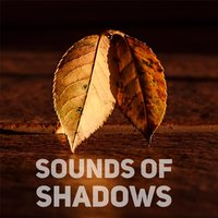 Sounds of Shadows — Vibhor Pandit