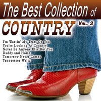 The Best Collection of Country Vol. 3 — сборник