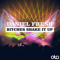 Bitches Shake It Up — Daniel Fresh