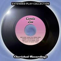 The Extended Play Collection, Vol. 134 — Curtis Lee
