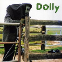 Sunday Afternoon — Dolly
