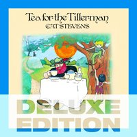 Tea for the Tillerman deluxe set — Cat Stevens