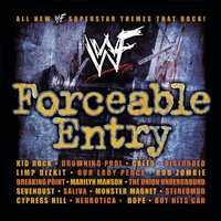 WWF Forceable Entry — WWF
