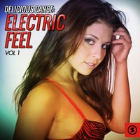 Delicious Dance Electric Feel, Vol. 1 — сборник
