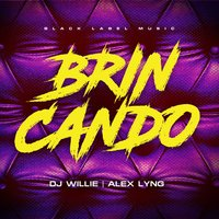 Brincando — DJ WILLIE, Alex Lyng