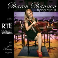 Flying Circus — Sharon Shannon, The RTE Concert Orchestra