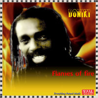 Flames Of Fire — Doniki