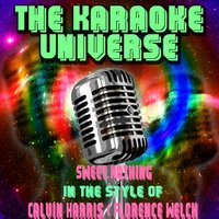 Sweet Nothing[In The Style Of Calvin Harris, Florence Welch] — The Karaoke Universe