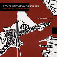 Pickin' On The White Stripes : A Bluegrass Tribute - Banjo Army for a Bluegrass Nation — Pickin' On Series
