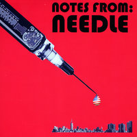 Notes From Needle (Part 1) — Zweng