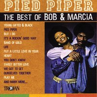 Pied Piper - The Best of Bob & Marcia — Bob & Marcia