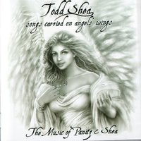 Songs Carried On Angels Wings — Todd Shea