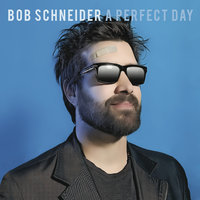 A Perfect Day — Bob Schneider