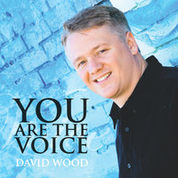 You Are the Voice — David Wood