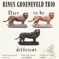 Dare to be Different — Rinus Groeneveld, Wilbert de Joodse, Pierre v.d. Linde