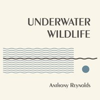 Underwater Wildlife — Anthony Reynolds