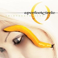 Thirteenth Step — A Perfect Circle