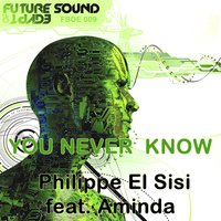 You Never Know — Philippe El Sisi, Aminda