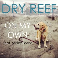 On My Own (feat. Ashley Leone) — Dry Reef