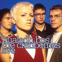 Bualadh Bos: The Cranberries Live — The Cranberries