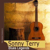 Blues Legends: Sonny Terry — Sonny Terry