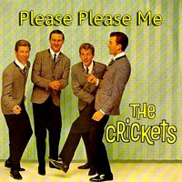 Please Please Me — The Crickets