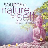 Sounds of Nature for Self Awareness — Sounds of Nature White Noise for Mindfulness, Meditation and Relaxation