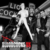 Bloodcocks UK — Bloodcocks UK