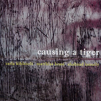 Causing a Tiger — Carla Kihlstedt, Matthias Bossi, Shahzad Ismaily