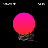 Asiatic — Arkon Fly