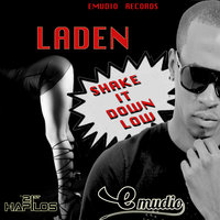 Shake It Down Low - Single — Laden