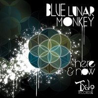 Here & Now — Blue Lunar Monkey