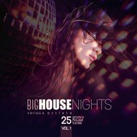 Big House Nights (25 Groovy House Tunes), Vol. 1 — сборник